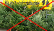Harz IV: Weihnachtsbaum seit 2011 gestrichen