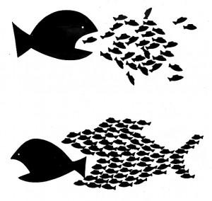 Occupy ruft weltweit zu einem Aktionstag morgen, Sonntag, den 15. Januar, auf